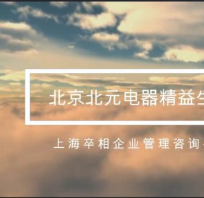 北京北元电器2年项目总结